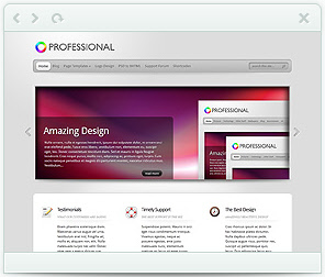 The Professional WordPress Theme